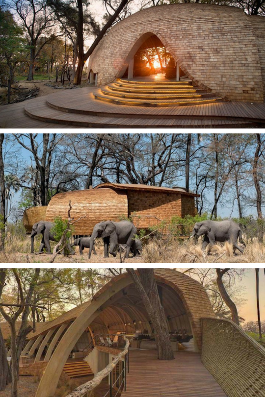 Sandibe-Okavango-Safari-Lodge2_Botswana_Cd-Mentiel-Magazine