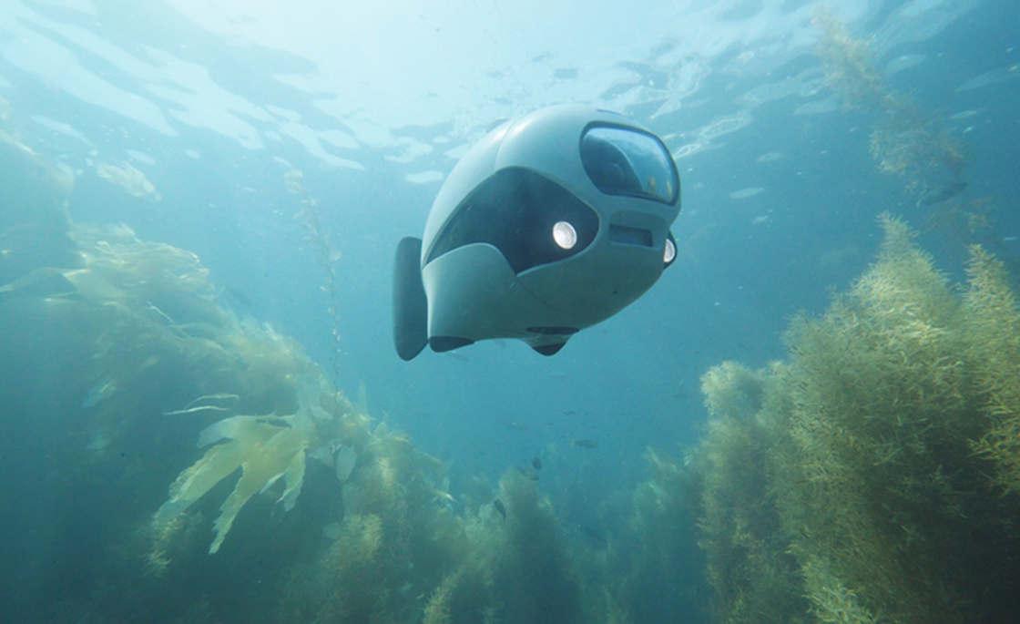 biki-drone-aquatique2_poisson-bionique_Cd-Mentiel-Magazine