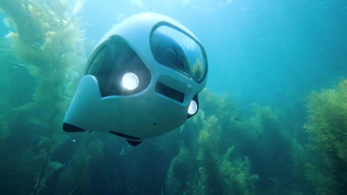 biki-drone-aquatique6_poisson-bionique_Cd-Mentiel-Magazine